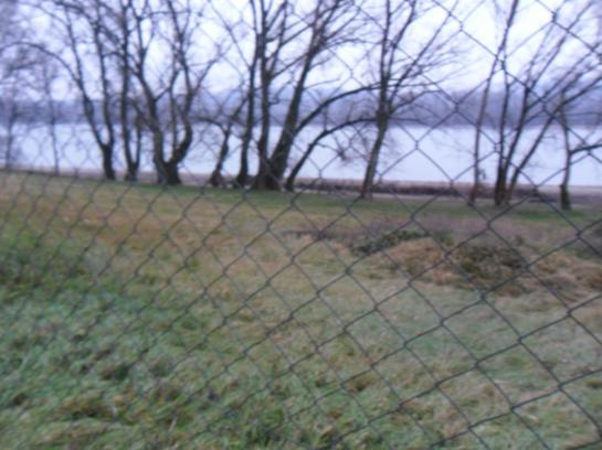 1ha pozemok pri Dunaji,skladové priestory Okres Komárno VK-PN-142