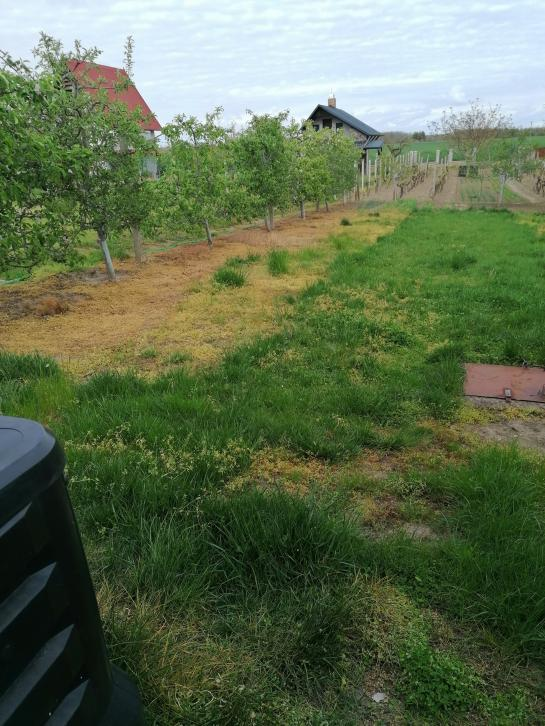 Záhrada s chatou na predaj Virt County Komárno VK-PN-1430